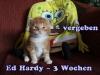 ed-hardy_3a