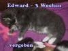 edward_3b