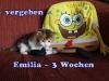 emilia_3a
