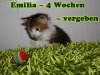 emilia_4