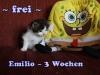 emilio_3b