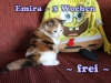 emira_3a