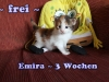 emira_3b