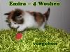 emira_4